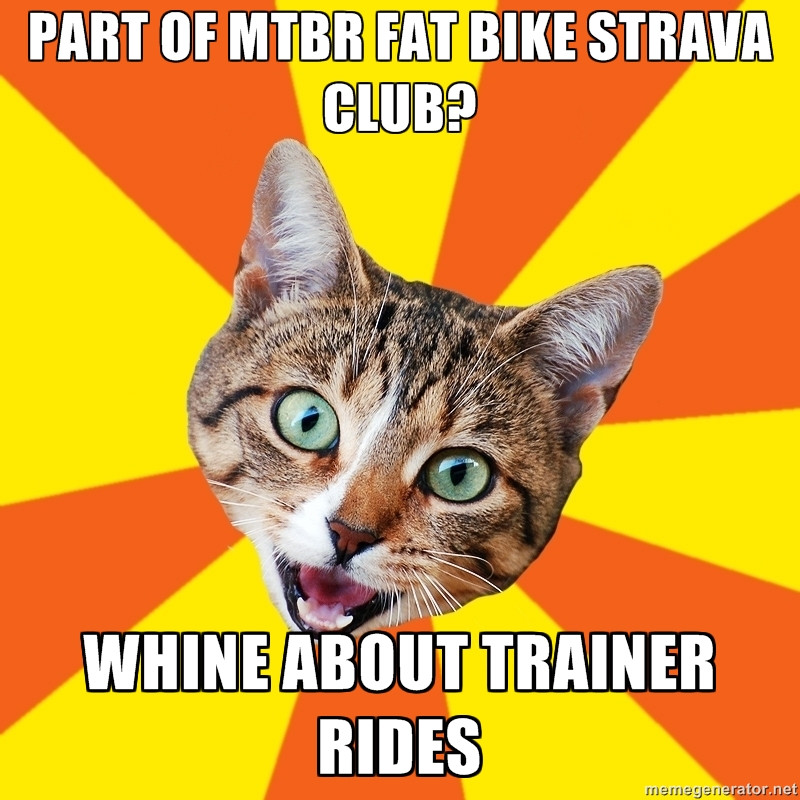Bad MTB Advice Cat-9fsj0kl.jpg