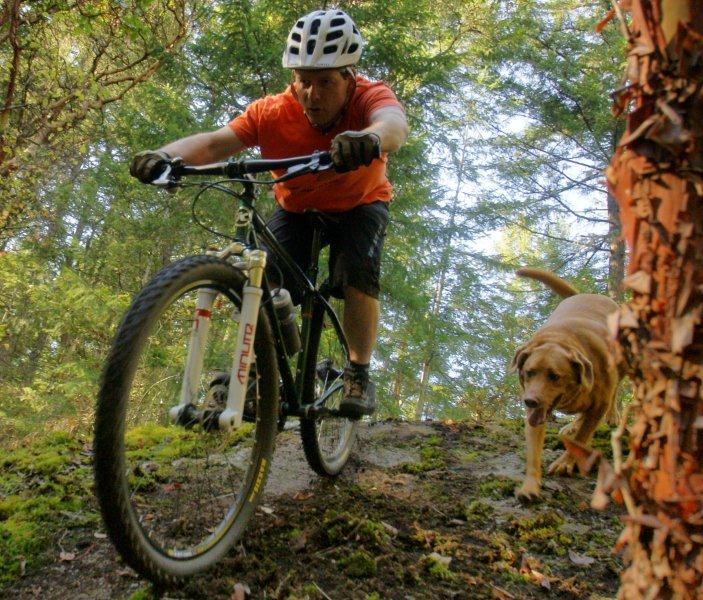 Can We Start a New Post Pictures of your 29er Thread?-_dsc6470.jpg