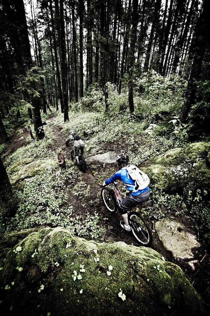 Bike Pics!-_dsc7451.jpg