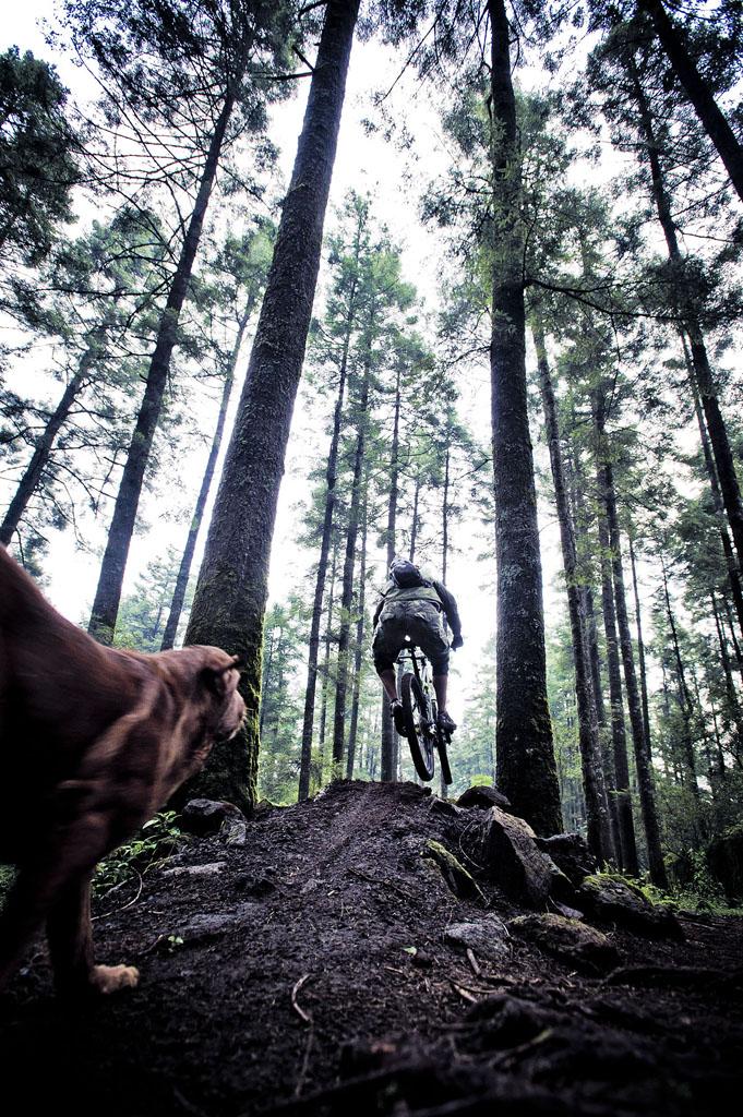 Bike Pics!-_dsc7474.jpg