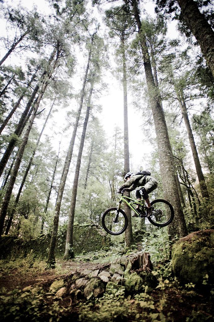 Bike Pics!-_dsc7535.jpg