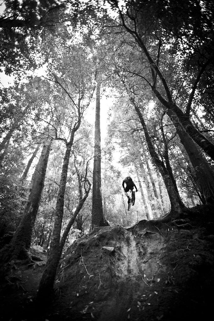 Bike Pics!-_dsc7636.jpg