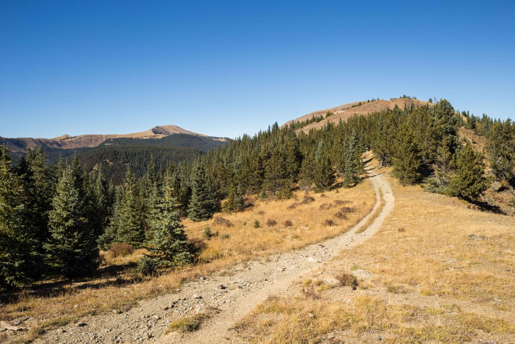 The NM Trail Pix Thread-_mg_0140.jpg