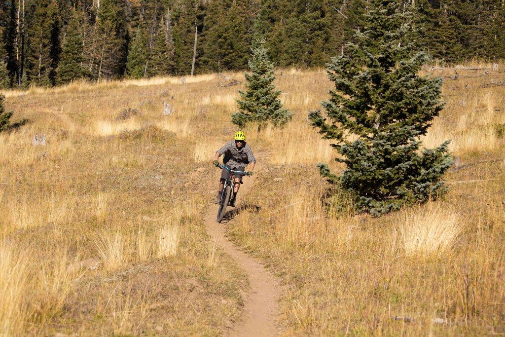 The NM Trail Pix Thread-_mg_0802.jpg