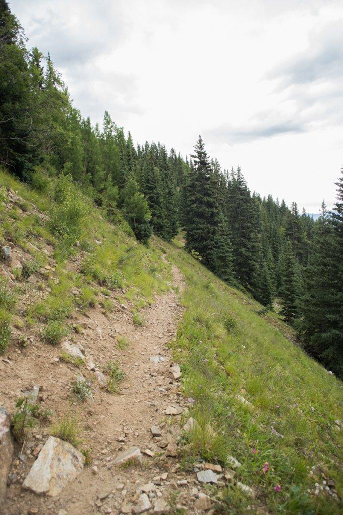The NM Trail Pix Thread-_mg_4306.jpg