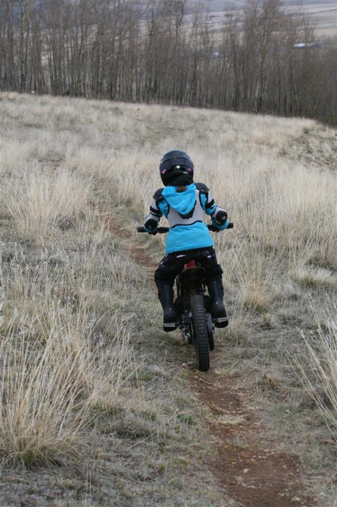 Skipping balance bikes and training wheels-2-.jpg