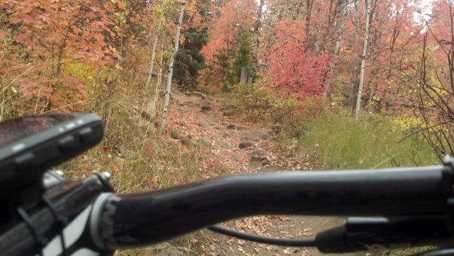 2013 Giant Anthem Advanced X29er 0 Ride Report-beautiful-tough-uphill.jpg