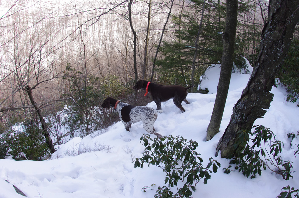 The Trails are Covered.....Post your snow..pics-a5.jpg