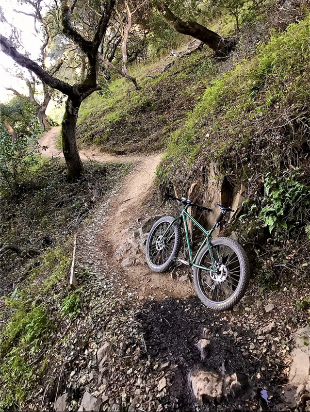 did you ride today?-a9502cc9-695a-45f1-9d38-175e6696678c.jpg