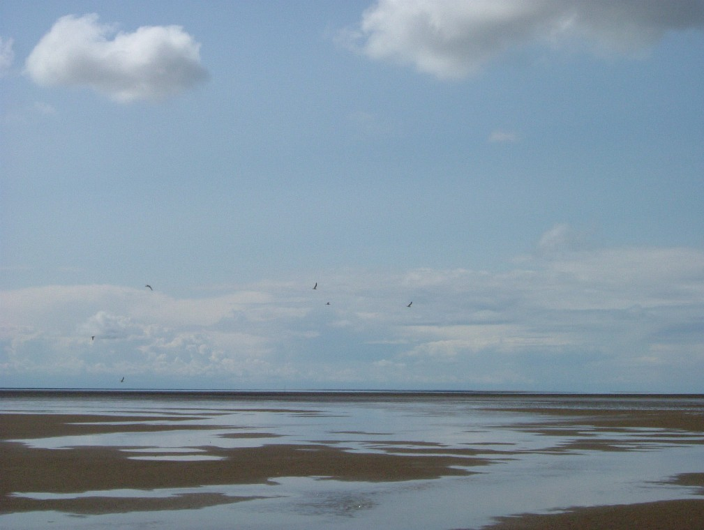 Beach/Sand riding picture thread.-ab3.jpg