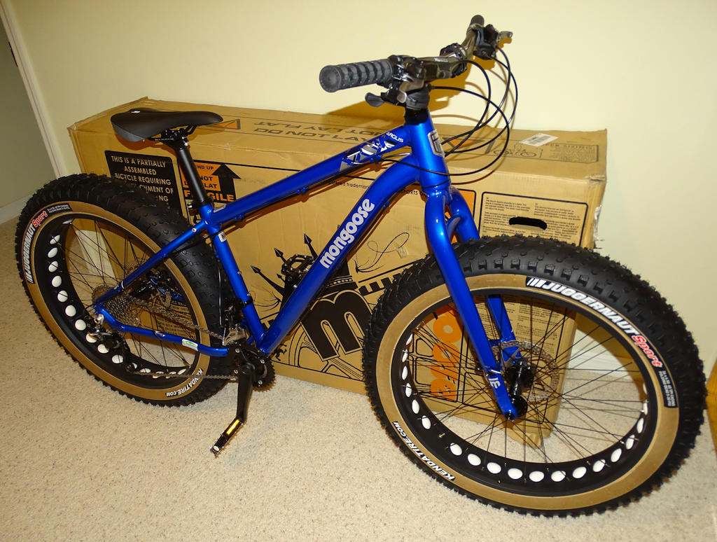 Argus:  A fat bike for the masses? Review & Assembly-ac04.jpg