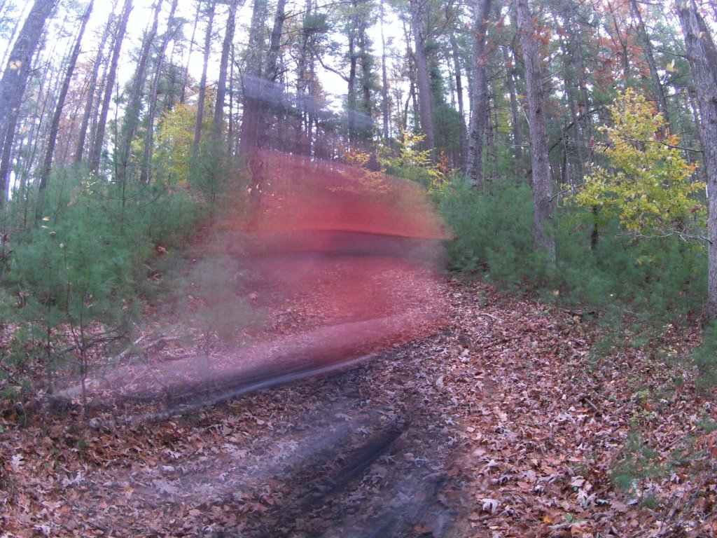 Motion Blur Pictures-actp0141.jpg