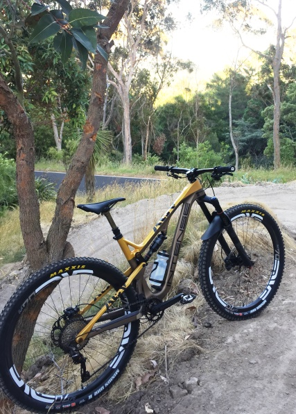 Introducing the Intense ACV 27.5+ Yes, they did!-acv-envem7029.jpg