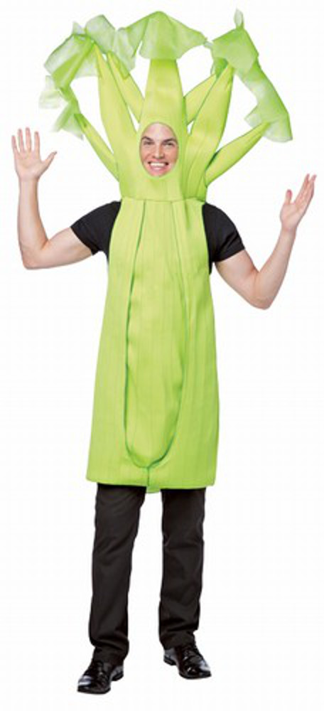Post your CraigsList WTF's!?! here-adult-celery-costume-1.jpg
