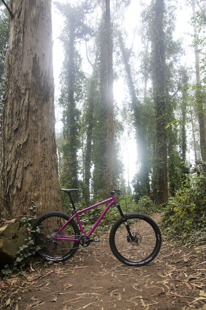 First Frame! 650b Hardtail-ai6a8895.jpg