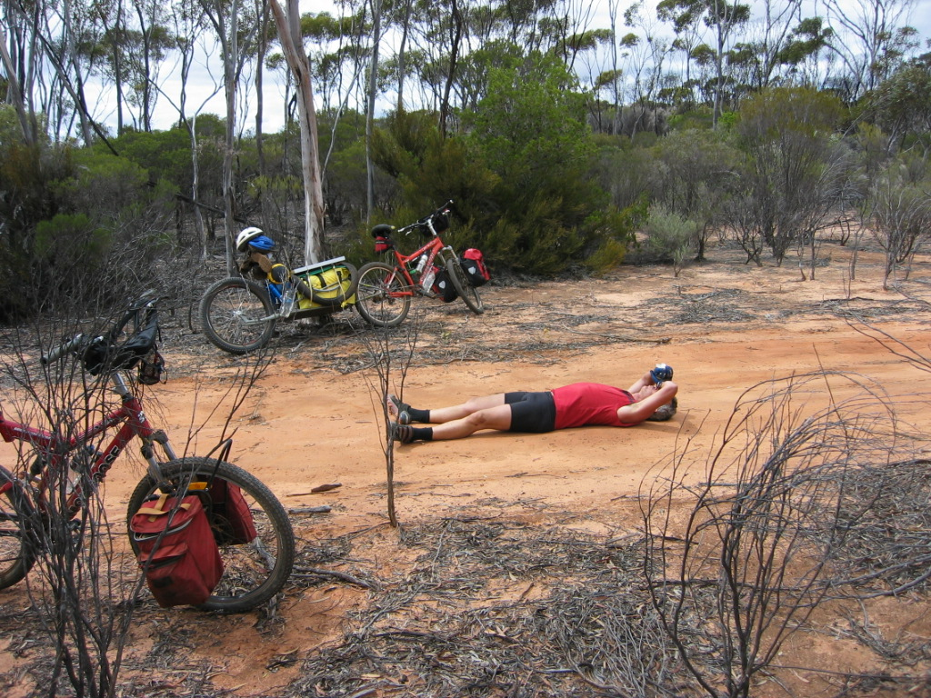 Welcome to the Bikepacking Forum - roll call-al-laying-track-day-3-img_7196.jpg