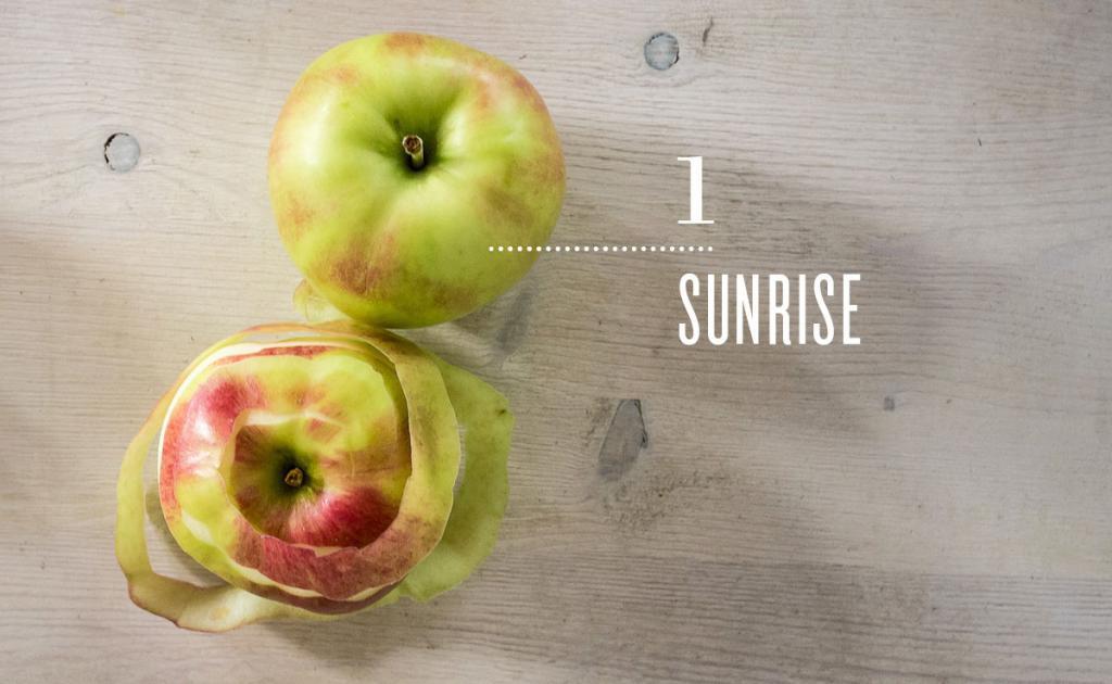 Vegetarian and Vegan Passion-alaviealamode-natrel-petit-guide-partique-de-la-pomme-1-sunrise.jpg