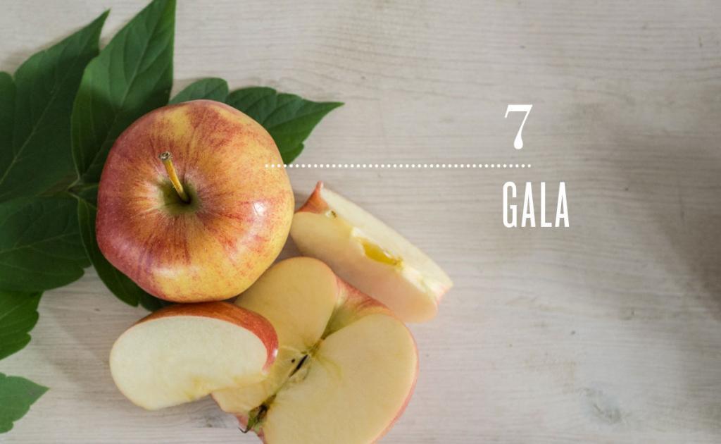 Vegetarian and Vegan Passion-alaviealamode-natrel-petit-guide-partique-de-la-pomme-7-gala.jpg