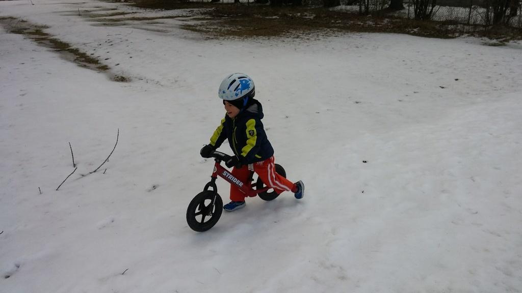 balance bike-alex_striderwinter.jpg