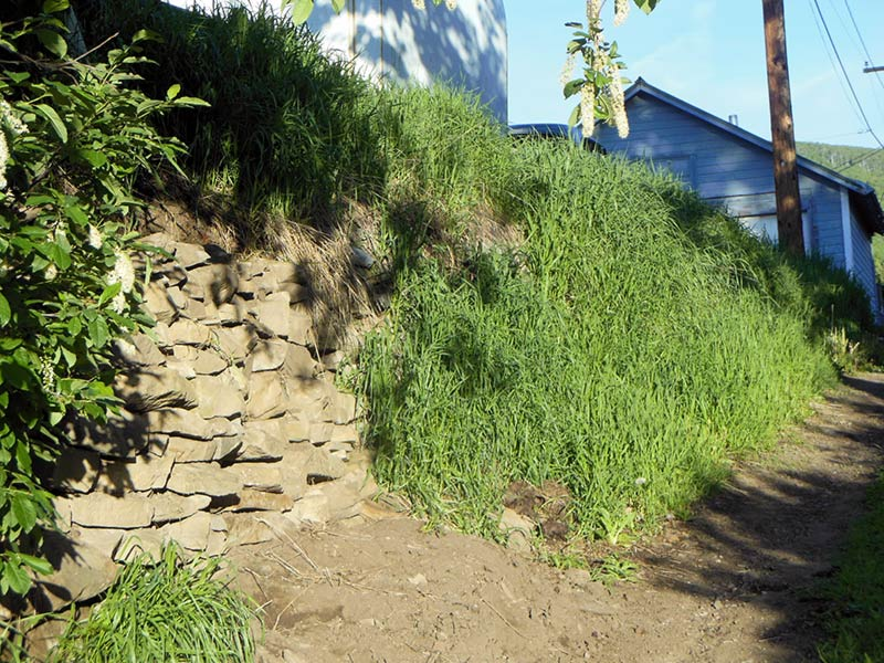 Trail Pics-alley2.jpg