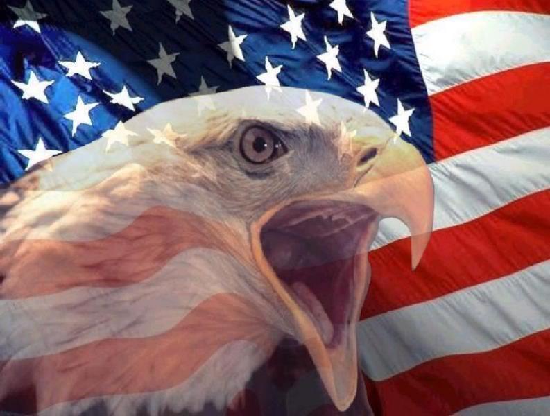 Veterans..... Thank You-americanflagandbaldeagle.jpg