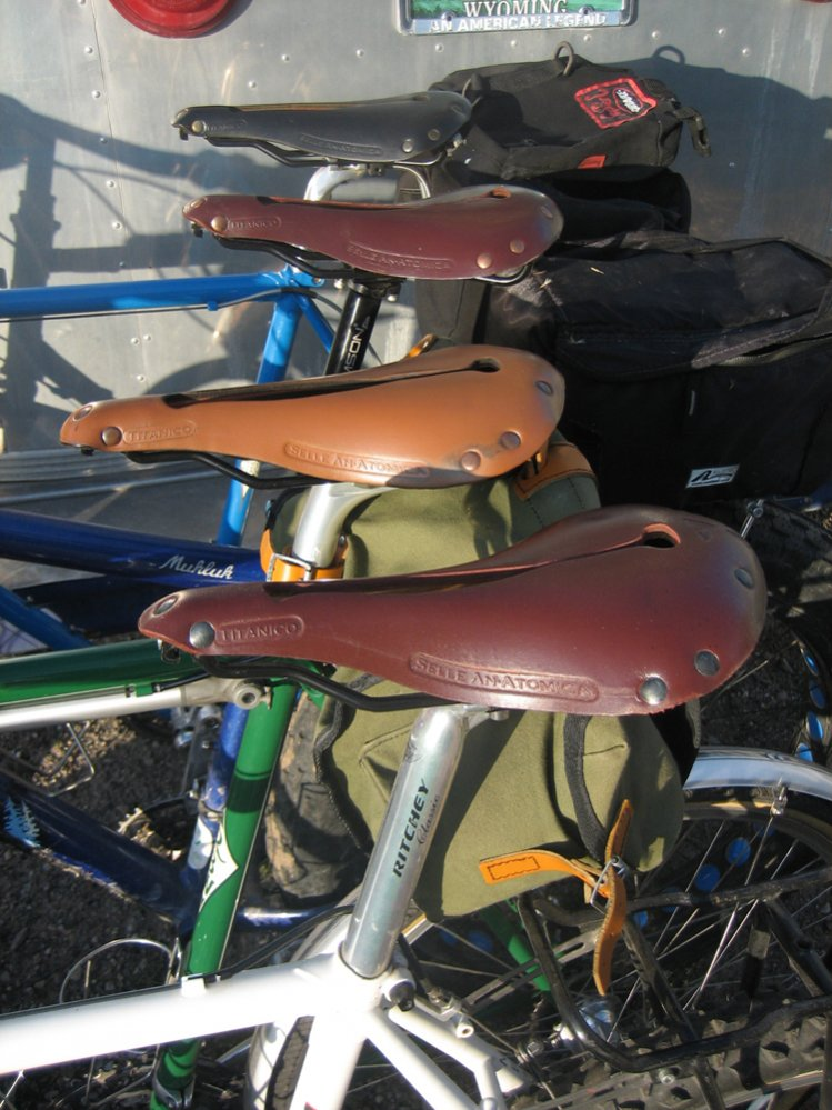 Brooks Saddle?-anatomicas.jpg