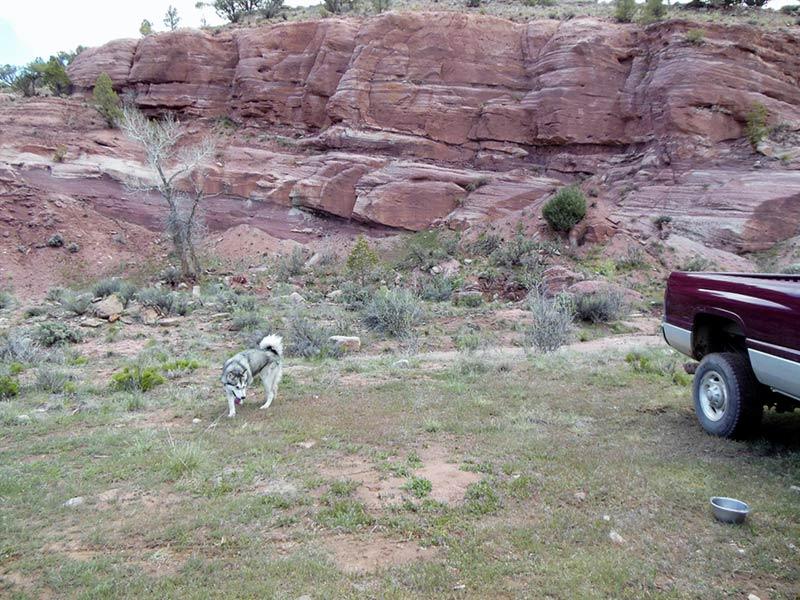Trail Pics-antcrk3-b.jpg