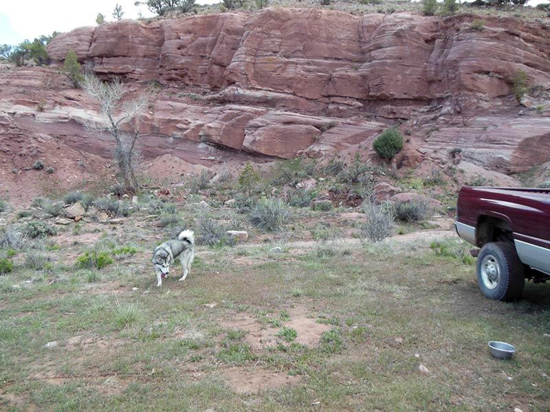 Trail Pics-antcrk3.jpg