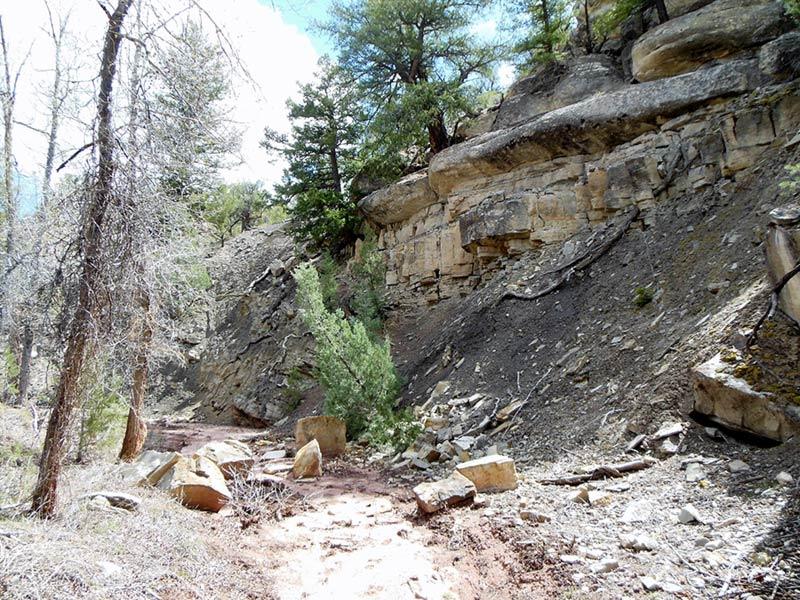 Trail Pics-antcrk9-b.jpg