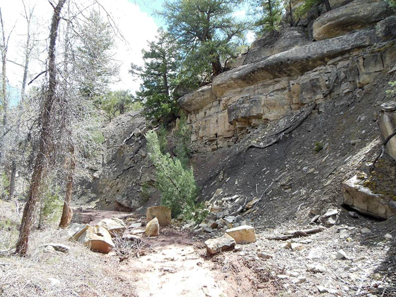 Trail Pics-antcrk9.jpg