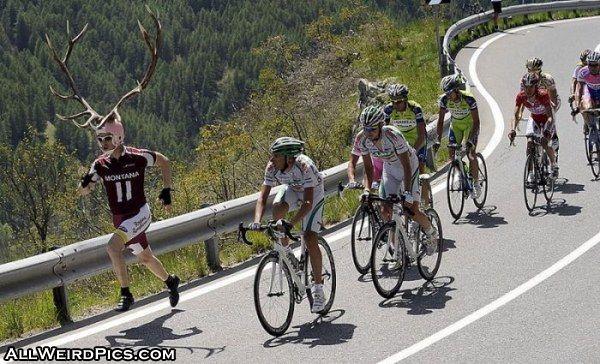 Antlers-antlers_man.jpg