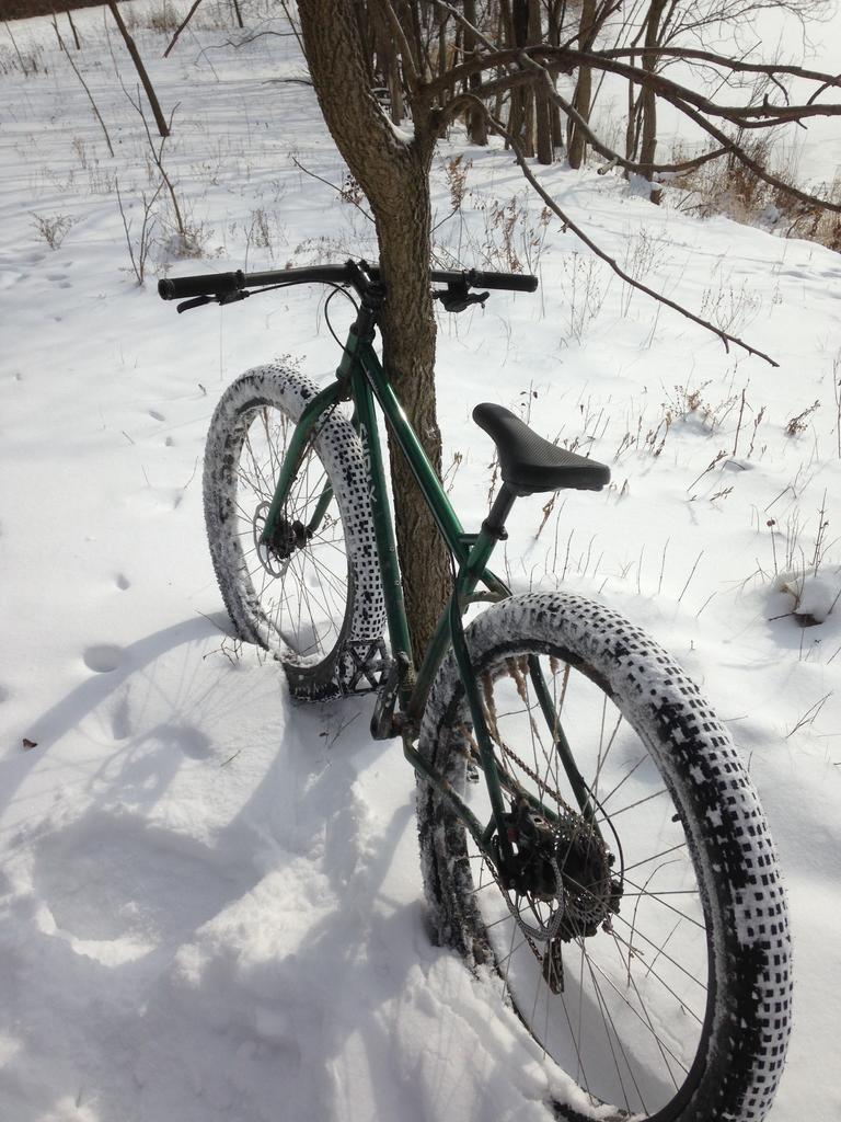 Have you found your unicorn bike?-antr1-16-2.jpg