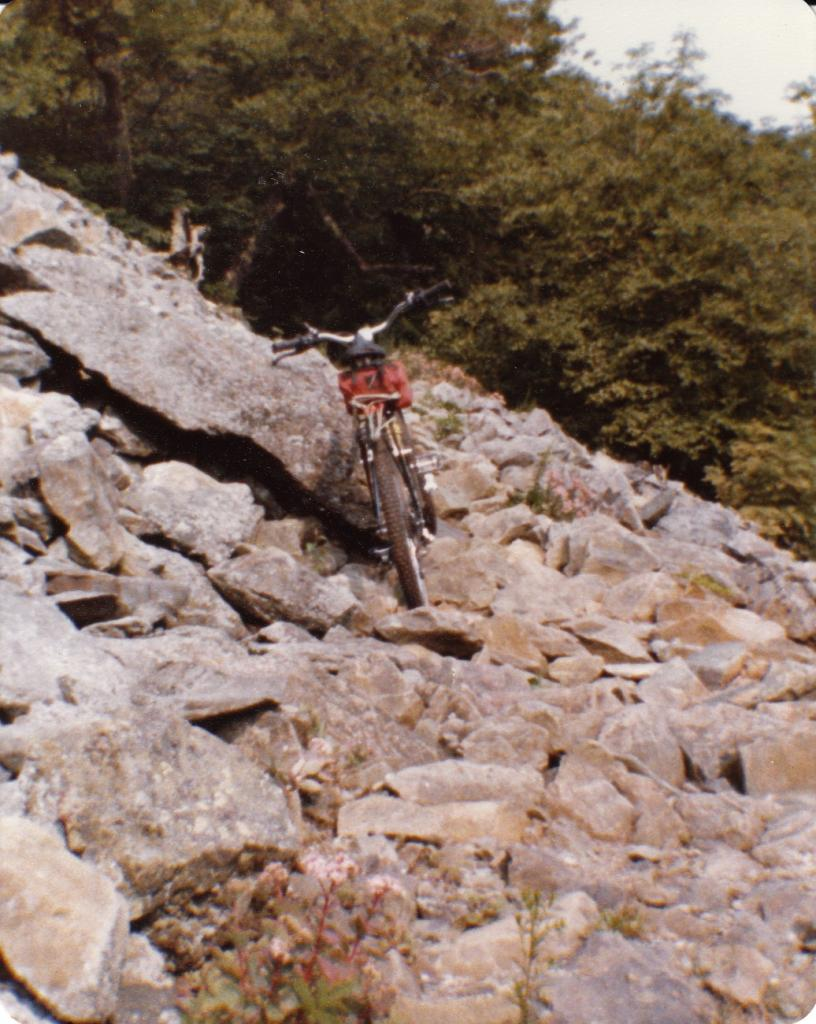 show us your stumpjumper HT-appalchiantrail1982_0007.jpg