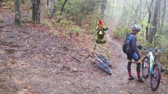 Adventures with the Pisgah Gnome-april-2012-086.jpg