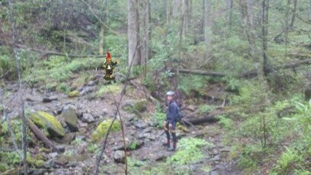 Adventures with the Pisgah Gnome-april-2012-088.jpg