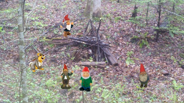 Adventures with the Pisgah Gnome-april-2012-098.jpg