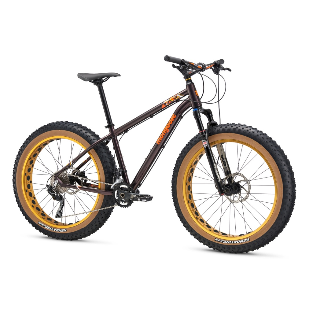 Argus:  A fat bike for the masses? Review & Assembly-argus-expert.jpg