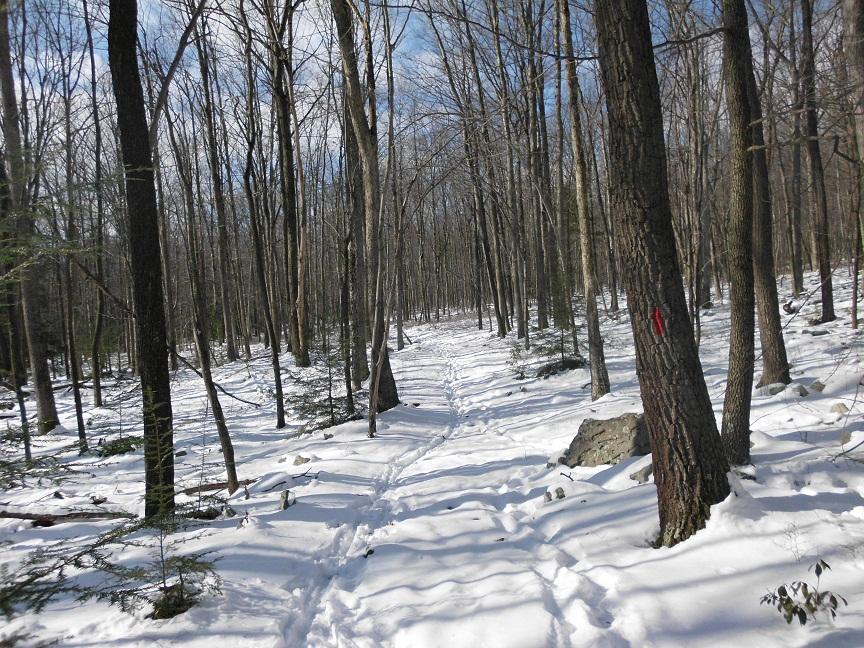 snow ride-aristes-snow-003.jpg