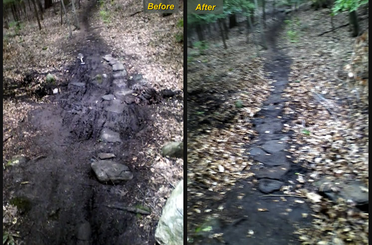 Trumbull Before and After PICs TM 2012 (FCNEMBA/TTC  Keepin' Single Tracks Single)-armorshift-beforeafter750.jpg