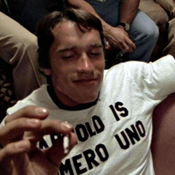 safety breaks-arnold_schwarzenegger_arnold_is_numero_uno_t_shirt_600x.jpg