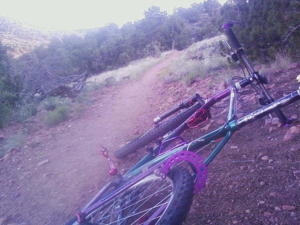 Trail Pics-arroyo-hondo-trails-9.jpg