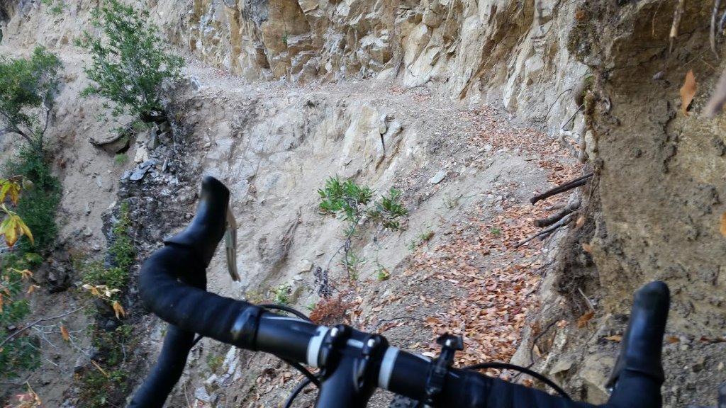 Trail Pics-arsc2.jpg