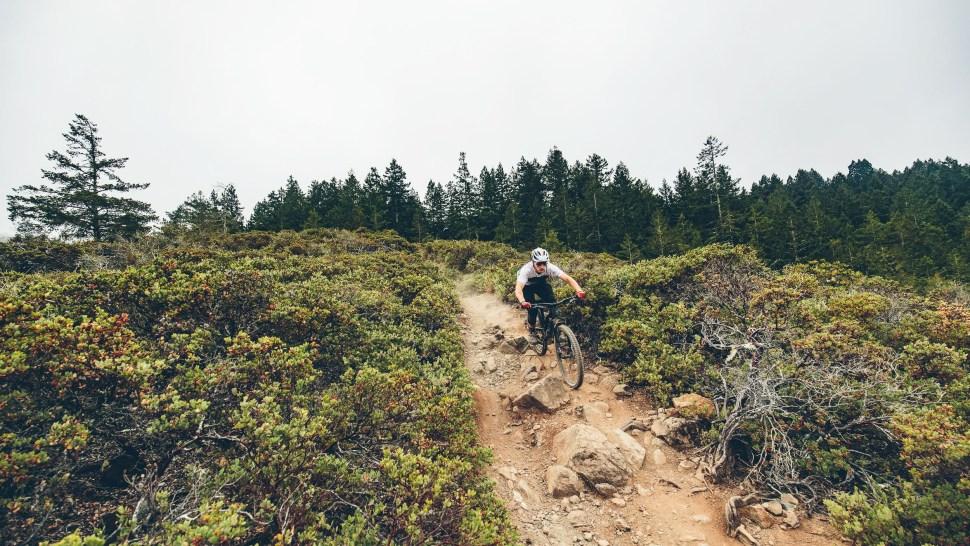 Bike Mag Bible in Marin-as_8908.jpg