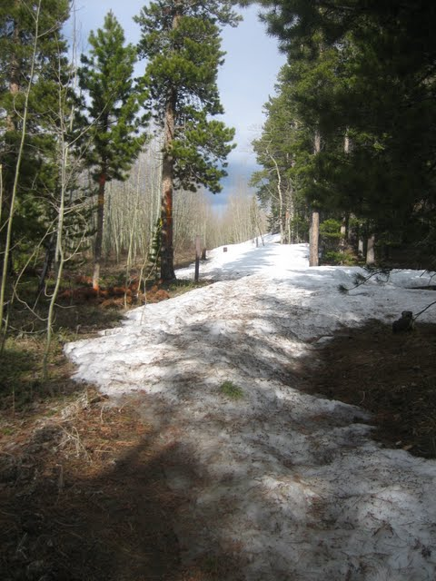 Sourdough trail conditions-aspen-alley.jpg