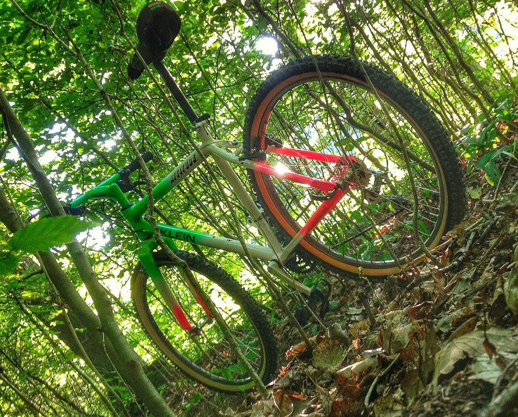 Trail Pics-atatrail1.jpg