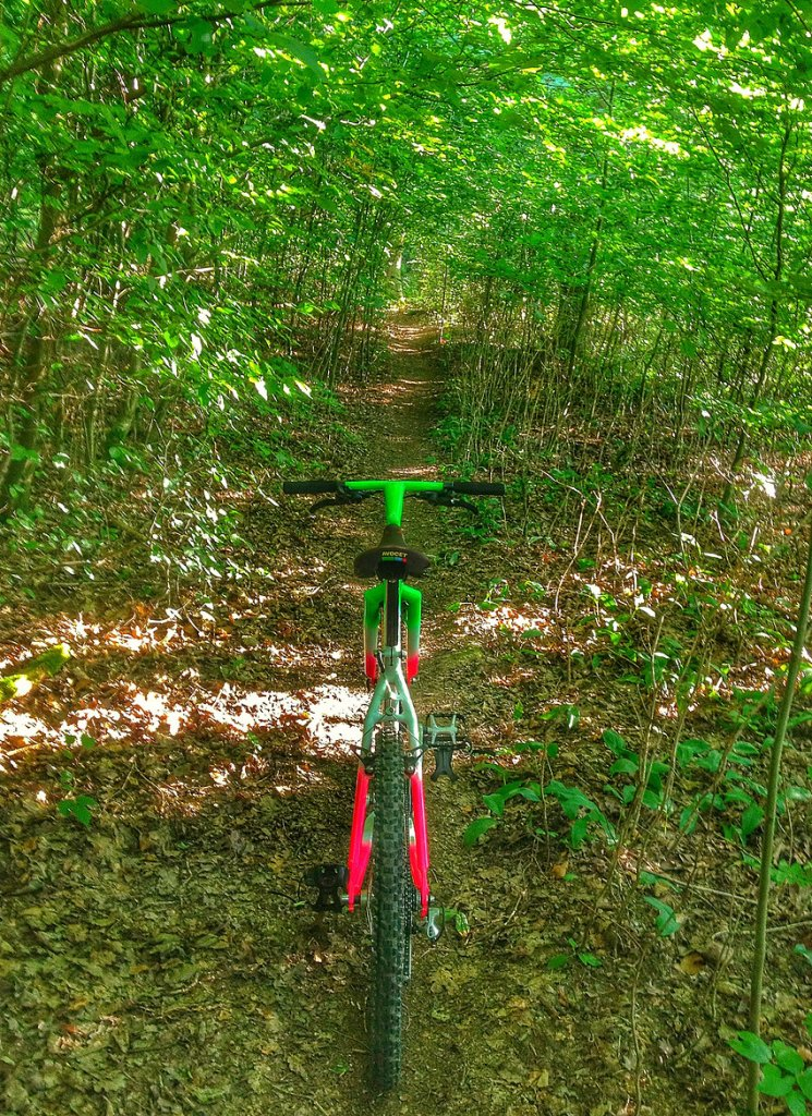 Trail Pics-atatrail2.jpg