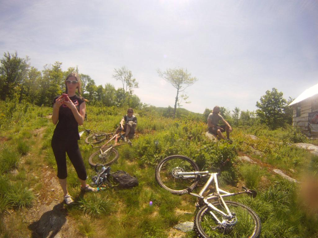 All Our Bikes-atthetop.jpg