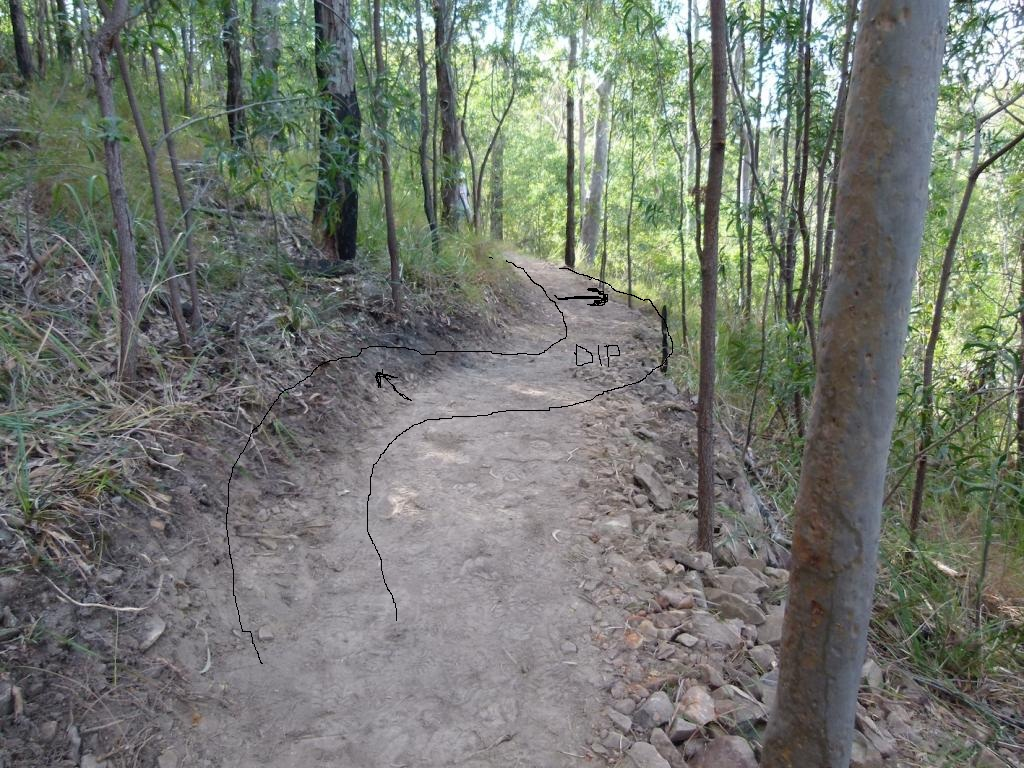 How to combat trail-building misinformation?-aus-pic-2.jpg