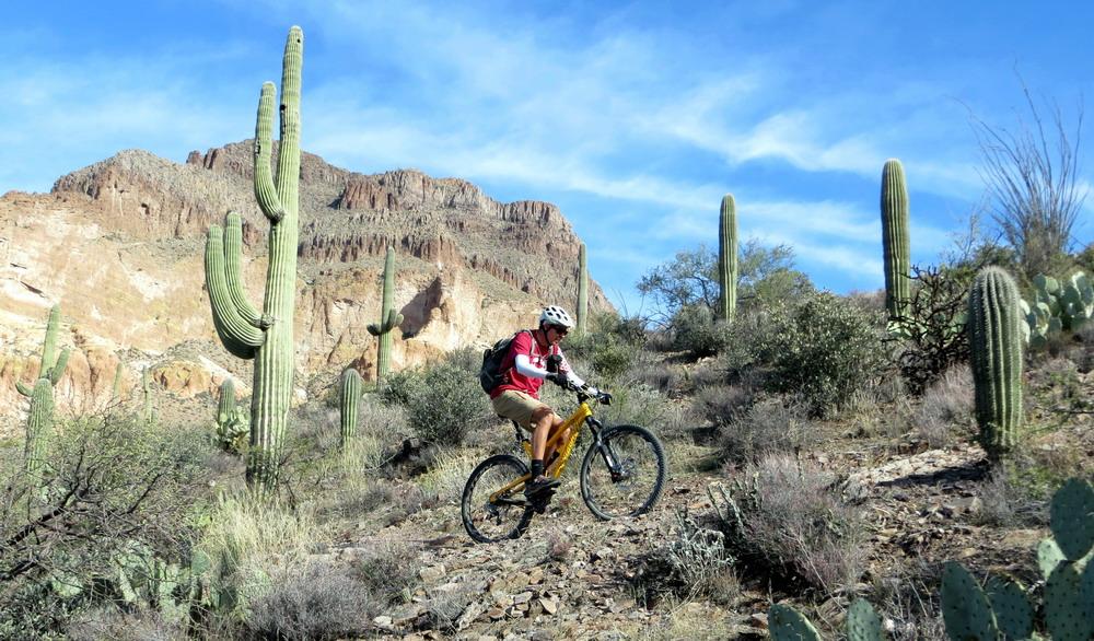 Big Country - AZ Trail Picket Post to Cochran-az-tr-pket-cochrann-11-30-13-034.jpg