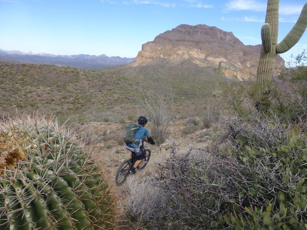 Big Country - AZ Trail Picket Post to Cochran-az-tr-pket-cochrann-11-30-13-052.jpg